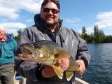 Lake of the Woods Walleye