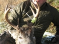 northwest_ontario_deer_29